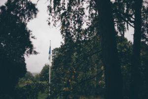 sonja ja teemu (13)